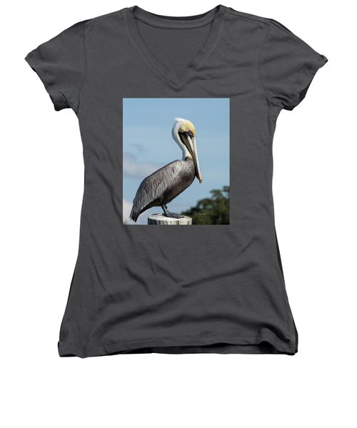 Biloxi Pelican Women's V-Neck T-Shirt