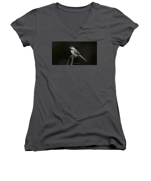 Black-capped Chickadee Women's V-Neck T-Shirt (Junior Cut) by Diane Giurco