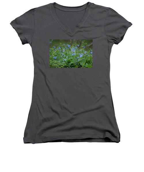Blue Bells Women's V-Neck T-Shirt (Junior Cut) by Heidi Poulin