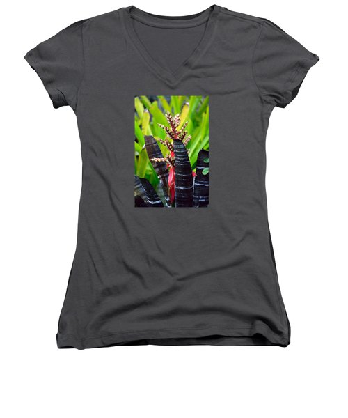 Bromelia Women's V-Neck T-Shirt (Junior Cut) by Edgar Torres