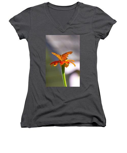 Butterfly On Flower Women's V-Neck