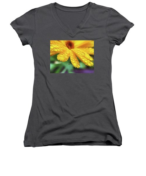 Calendula Officinalis Women's V-Neck (Athletic Fit)