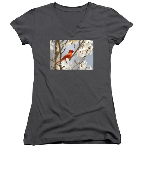 Women's V-Neck featuring the photograph Cardinal In Magnolia by Angel Cher