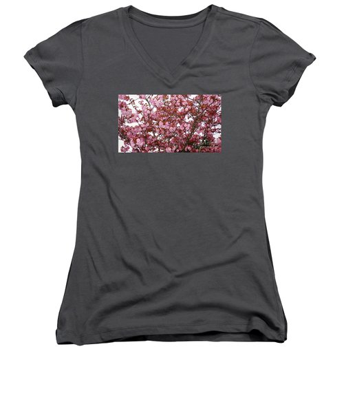 Women's V-Neck T-Shirt (Junior Cut) featuring the photograph Cherry Blossoms  by Victor K