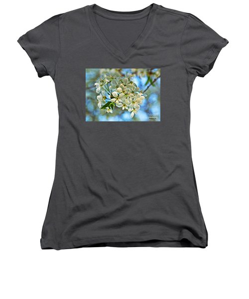 Cherry Tree Flowers Women's V-Neck (Athletic Fit)