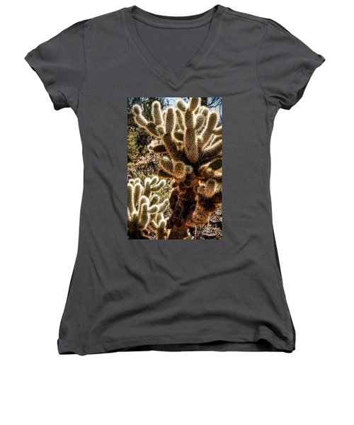 Women's V-Neck T-Shirt (Junior Cut) featuring the photograph Cholla Cacti by Lawrence Burry
