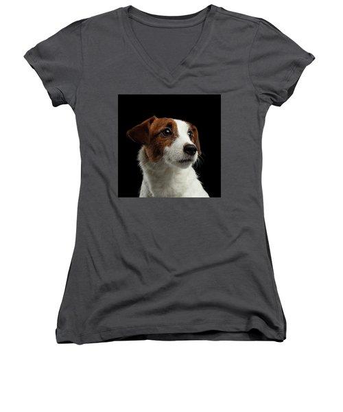 Closeup Portrait Of Jack Russell Terrier Dog On Black Women's V-Neck T-Shirt (Junior Cut) by Sergey Taran