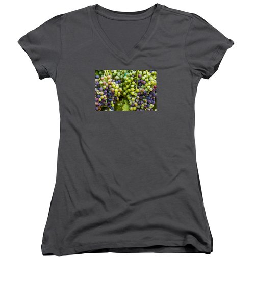 Colorful Wine Grapes On Grapevine Women's V-Neck