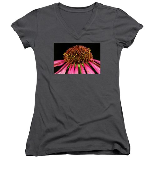 Cone Flower Women's V-Neck T-Shirt (Junior Cut) by Jay Stockhaus