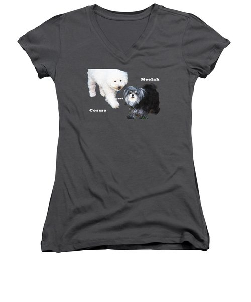 Cosmo And Meelah 1 Women's V-Neck T-Shirt (Junior Cut) by Terry Wallace