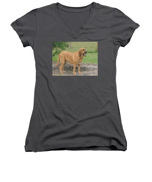 Cujo At The Park Women's V-Neck T-Shirt (Junior Cut) by Val Oconnor