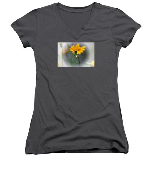 Double Yellow Women's V-Neck T-Shirt