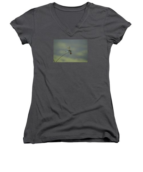 Women's V-Neck T-Shirt (Junior Cut) featuring the photograph Dragonfly by Heidi Poulin