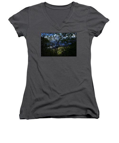 Dusk Women's V-Neck T-Shirt (Junior Cut) by Tammy Schneider