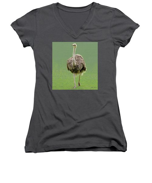 Emu Women's V-Neck T-Shirt (Junior Cut)