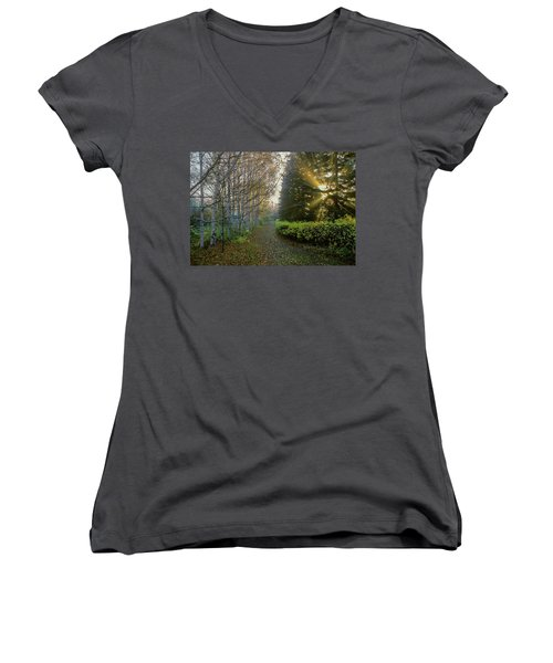 Evening Light Women's V-Neck T-Shirt (Junior Cut)