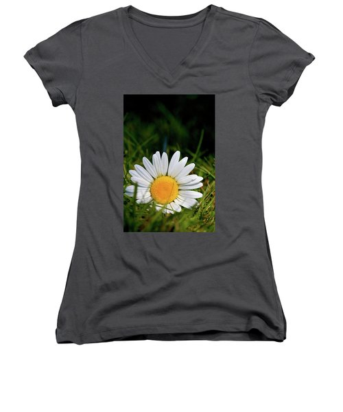 Fallen Daisy Women's V-Neck T-Shirt (Junior Cut) by Scott Holmes
