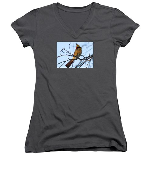 Women's V-Neck T-Shirt (Junior Cut) featuring the photograph Female Northern Cardinal by Ricky L Jones