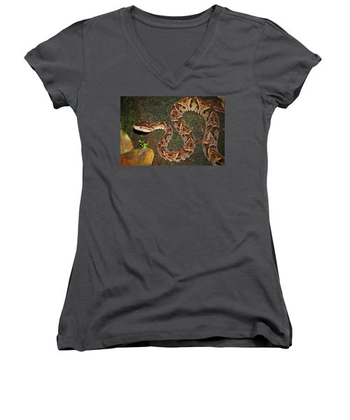 Women's V-Neck T-Shirt (Junior Cut) featuring the photograph Fer-de-lance, Bothrops Asper by Breck Bartholomew