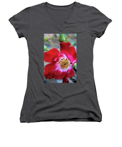 Flower Dance Women's V-Neck T-Shirt (Junior Cut) by Victor K