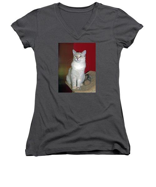 Fluffy Women's V-Neck T-Shirt
