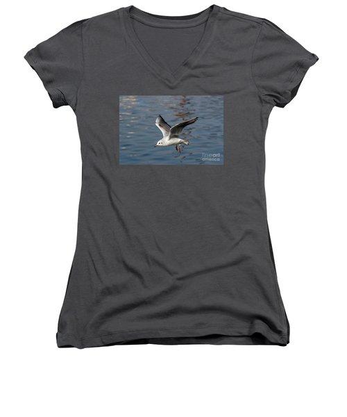 Flying Gull Women's V-Neck T-Shirt