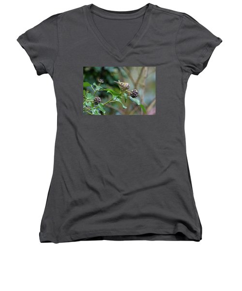 Goldcrest Women's V-Neck T-Shirt (Junior Cut) by Matt Malloy