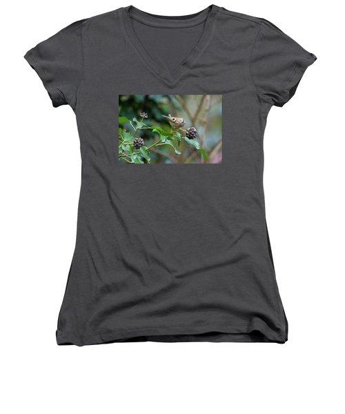 Goldcrest Women's V-Neck T-Shirt