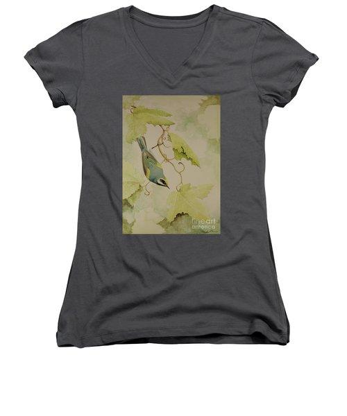Golden-winged Warbler Women's V-Neck