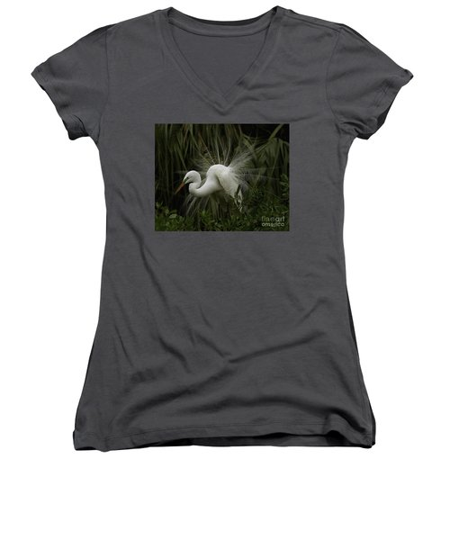 Great White Egret Displaying Women's V-Neck (Athletic Fit)