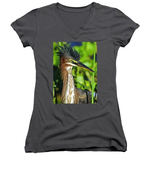 Green Heron  Women's V-Neck T-Shirt