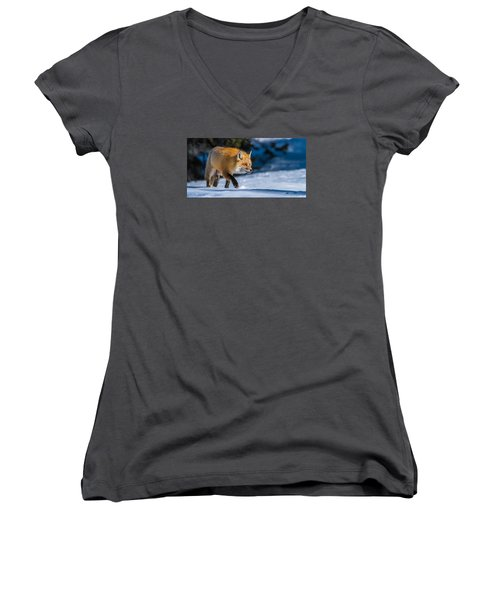 Women's V-Neck T-Shirt (Junior Cut) featuring the photograph Handsome Mr. Fox by Yeates Photography