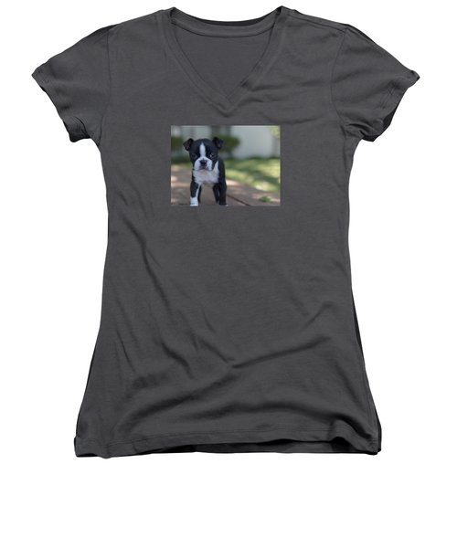 Women's V-Neck T-Shirt (Junior Cut) featuring the photograph Harley As A Puppy by Lora Lee Chapman