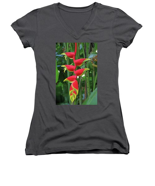 Women's V-Neck T-Shirt (Junior Cut) featuring the photograph Hawaii Flora by Denise Moore