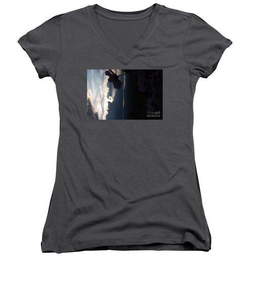 Women's V-Neck T-Shirt (Junior Cut) featuring the photograph In The Spotlight by Brian Boyle
