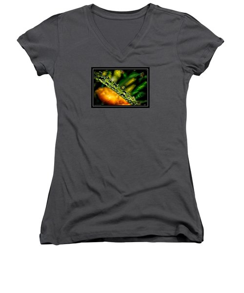 Women's V-Neck T-Shirt (Junior Cut) featuring the photograph Inspiration by Michaela Preston