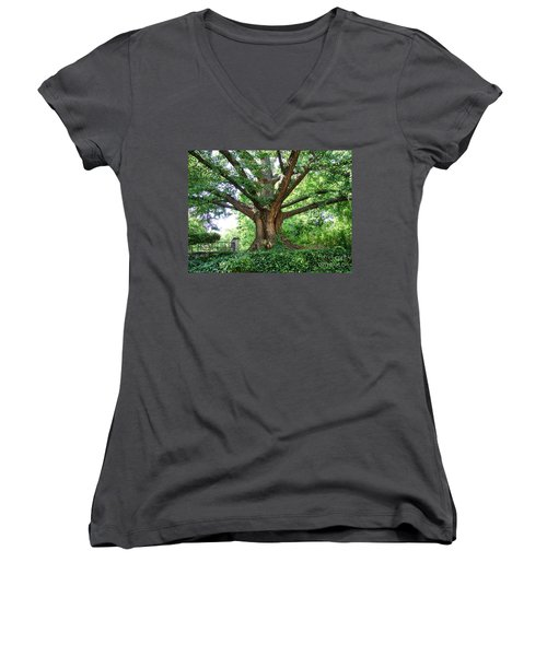Women's V-Neck T-Shirt featuring the photograph Inwood Ginkgo  by Cole Thompson