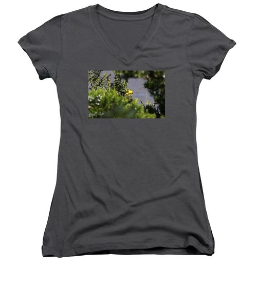 Is It Safe To Come Out? Women's V-Neck