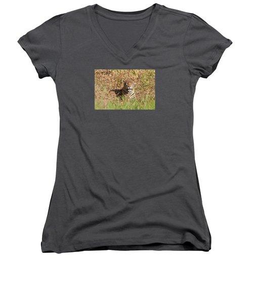 Jaguar Watching Women's V-Neck T-Shirt (Junior Cut) by Aivar Mikko