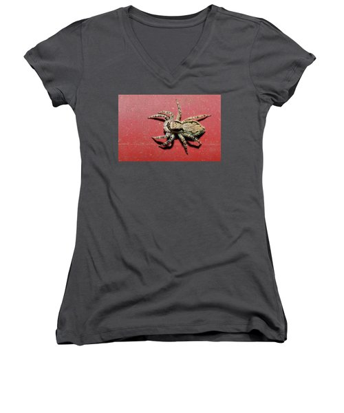 Jumping Spider Women's V-Neck (Athletic Fit)