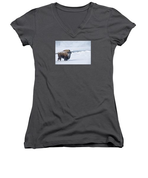 Lone Bison Women's V-Neck T-Shirt (Junior Cut) by Gary Lengyel