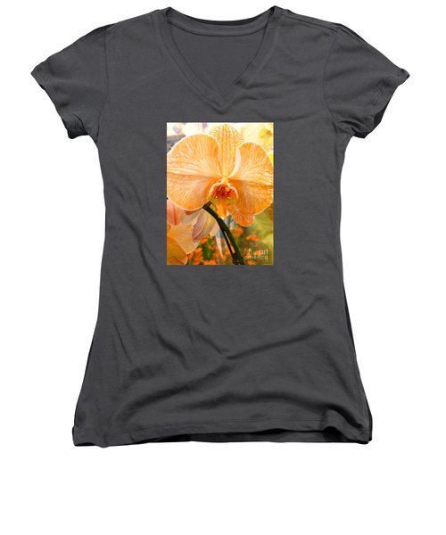 Orange Delight Women's V-Neck (Athletic Fit)