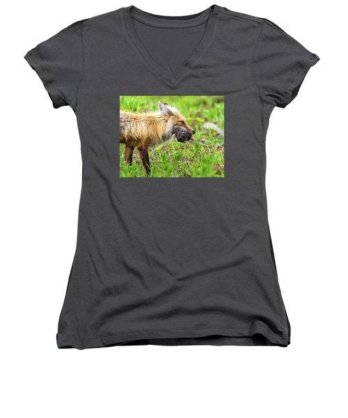 Out Foxed  Women's V-Neck T-Shirt (Junior Cut) by Scott Warner