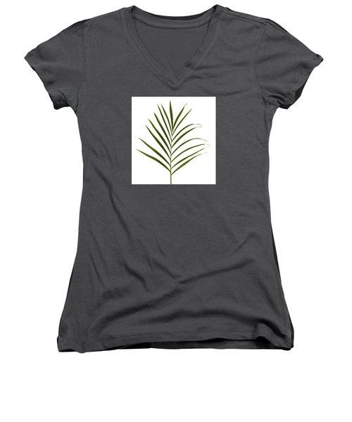 Palm Leaf Women's V-Neck T-Shirt (Junior Cut) by Tony Cordoza
