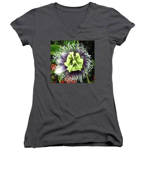 Passion Flower Women's V-Neck T-Shirt (Junior Cut) by Mary Ellen Frazee