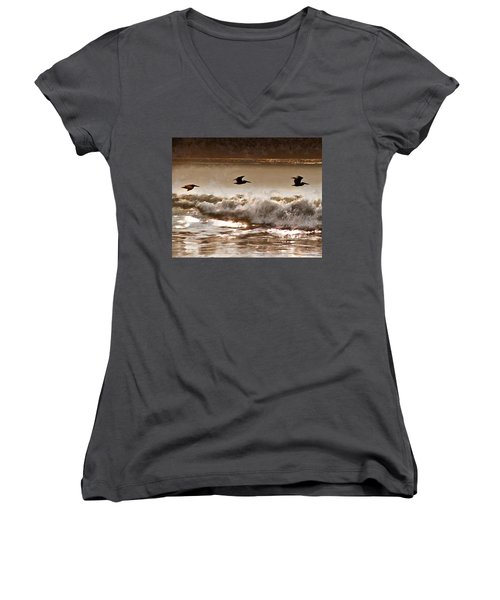 Pelican Patrol Women's V-Neck T-Shirt