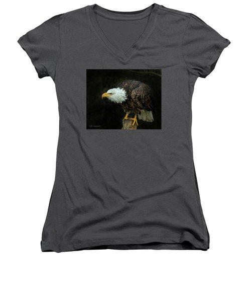 Perched Bald Eagle Women's V-Neck T-Shirt (Junior Cut) by CR Courson