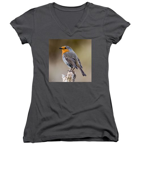 Perching Women's V-Neck T-Shirt (Junior Cut) by Torbjorn Swenelius