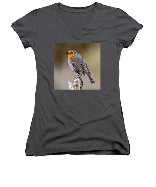Perching Women's V-Neck T-Shirt