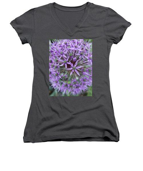 Purple Allium Burst Women's V-Neck T-Shirt (Junior Cut) by Rebecca Overton
